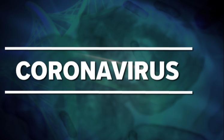 coronavirus slide image
